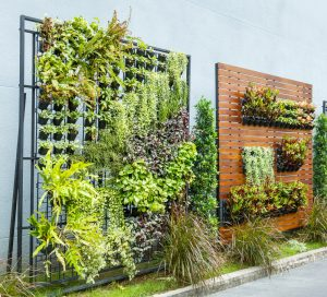 Beautiful vertical garden in city around office building to show around the world garden ideas for Santa Barbara