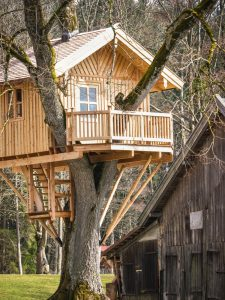 Adult Treehouse