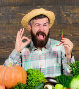 Farmer presenting hot chilli pepper wooden background. Pepper harvest concept. Rustic farmer in straw hat likes spicy taste. Man hold pepper harvest. Bearded farmer hold chilli red pepper in hand.