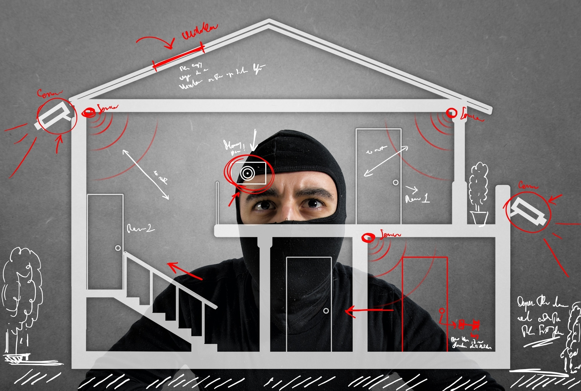 Thief studying luxury security system of a new house