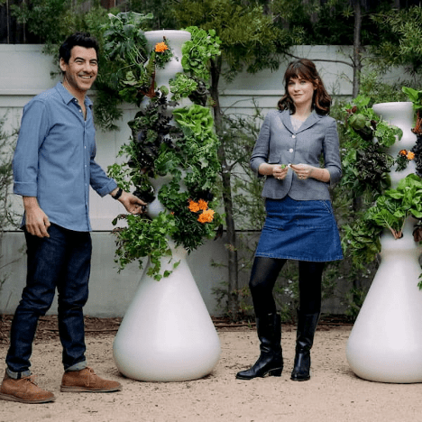 Zooey Deschanel and Jacob Pechenik in their backyard produce garden